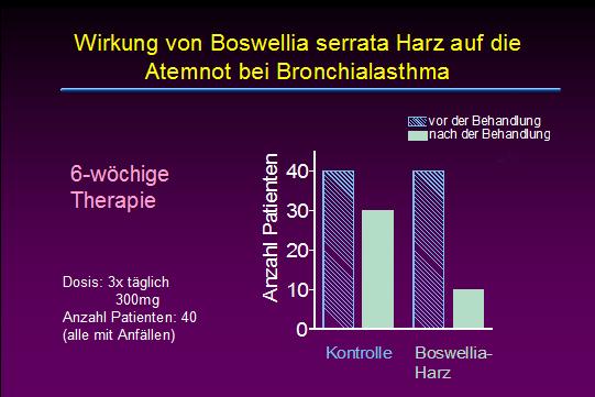 asthma1.jpg