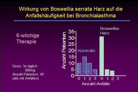 asthma2.jpg